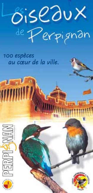 affiche oiseaux